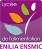image logo_ENILIAENMSIC.png (19.0kB) Lien vers: http://www.enilia-ensmic.fr/